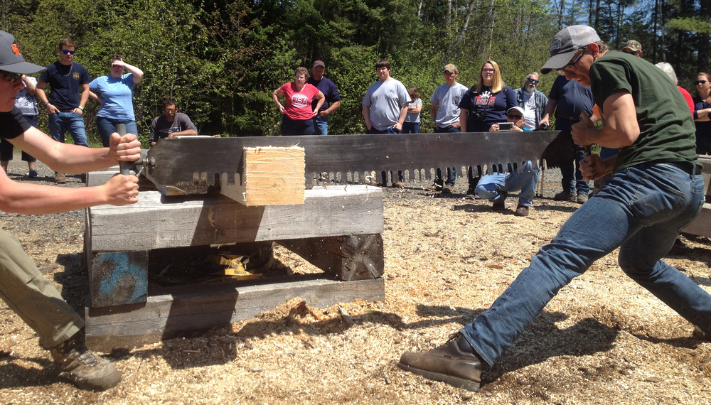 Forestry Students Win Big at State Competition