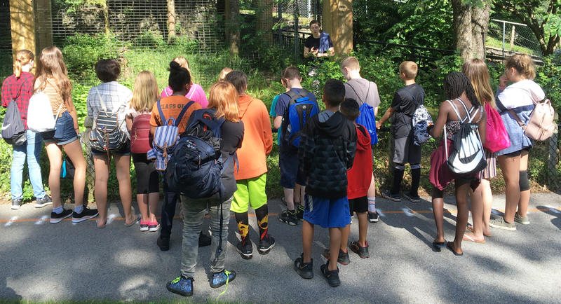 campers listen to zoo keeper at zoo exhibit